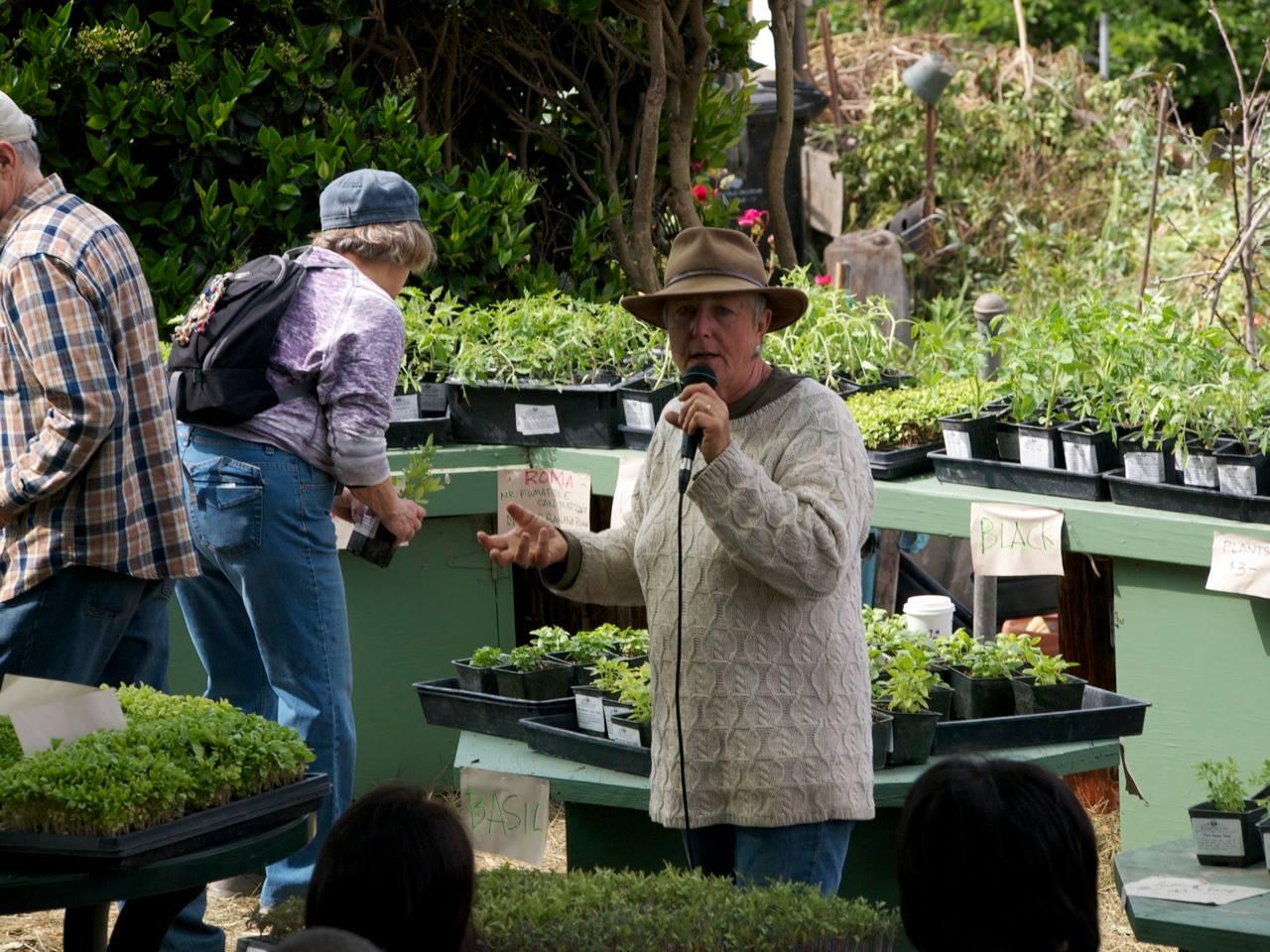Barbara Spencer at Tomato-bration